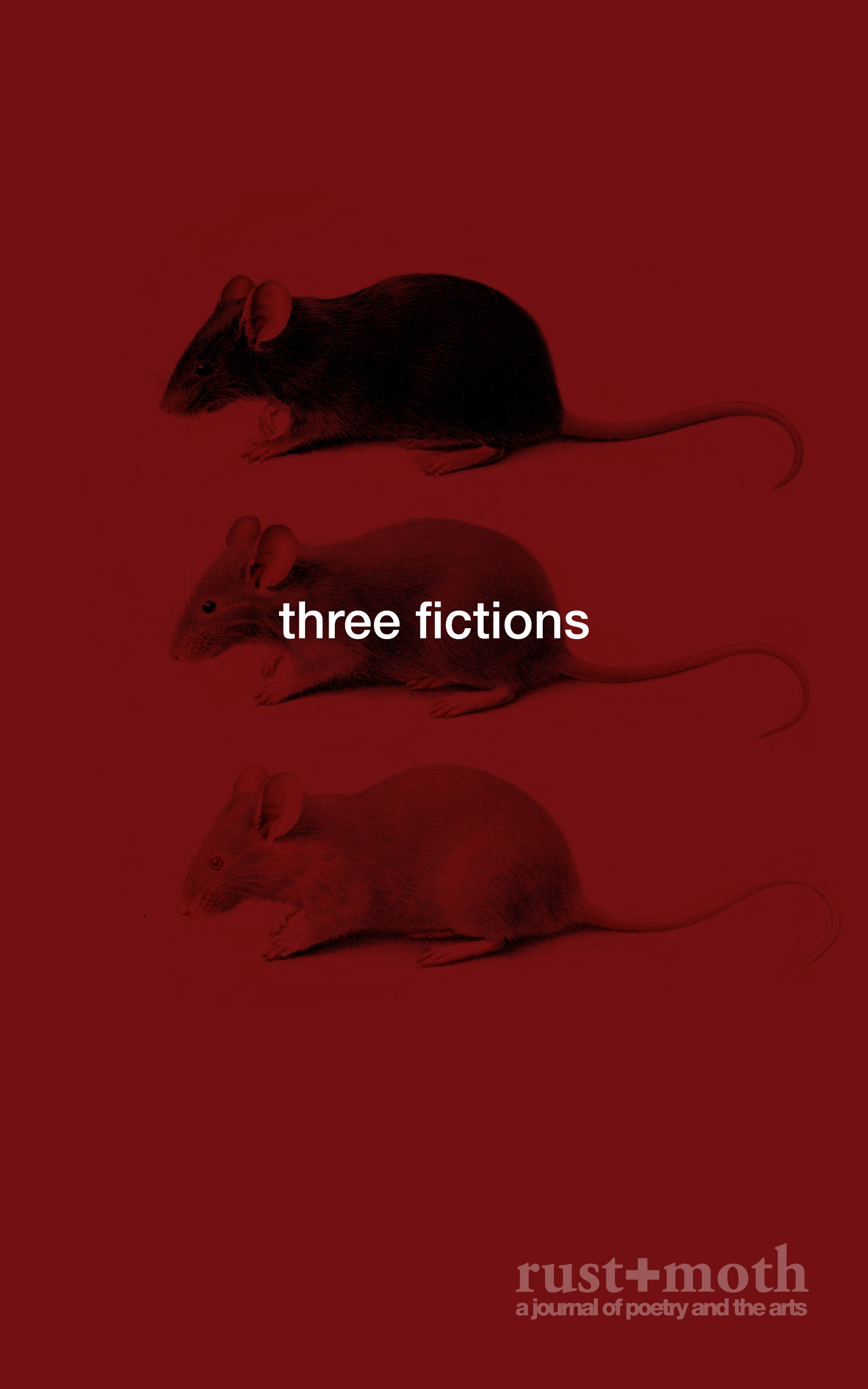 Three Fictions Cover